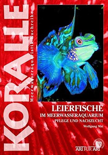 Leierfische im Meerwasseraquarium: Pflege und Nachzucht: Koralle / Im Meerwasseraquarium, Pflege und Nachzucht (Art für Art: Meerwasser)