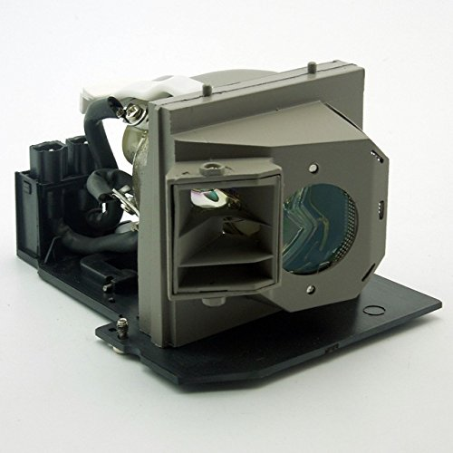 SP.83C01G001 / BL-FS300B Projector Replacement Lamp for OPTOMA EzPro / EP1080 / EP910 / H81 / HD80 / HD8000 / HD800X / HD803 / HD81 / HD81-LV / TX1080 Bl Fs300b Replacement Lamp