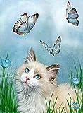 DIY 5D Diamante Pintura por Número Kit, Gato títere mariposa azul Diamond Painting para Adultos y Niños Pared de la Casa Decoración Regalos de cumpleaños