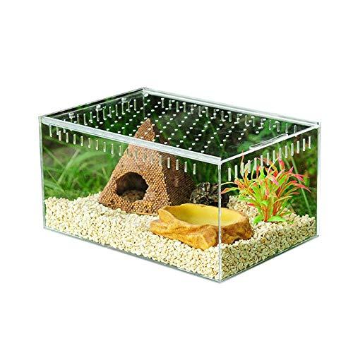 Hangarone Transparente Reptilienzuchtbox, Glas Vivarium Box Acryl Schiebedeckel Typ Fütterungsbox 10,5 x 8,5 x 6 cm