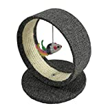GYY Cat Scratching Board with Hole Cat Climbing Frame Pet Small Size Cat Toy Cat Tree Cat Condos Funny Cat Toy with Hanging Mouse Pendant Terry Loop Hair Scraper Pet Cat Supplies