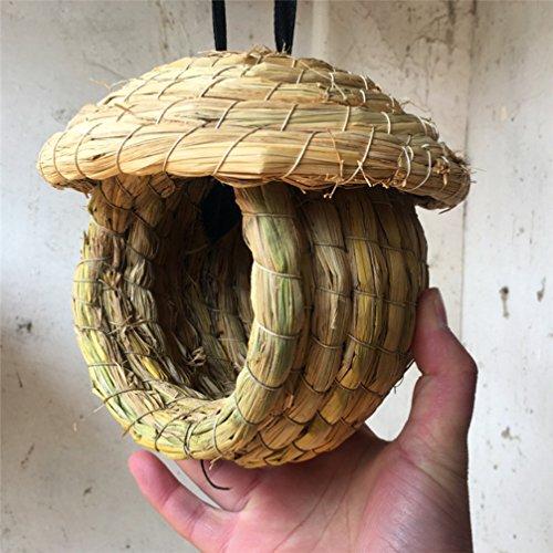 LA VIE Casa para Pajaros Caja Nido para Loro Agapornis Canario Caja de Cría de Pajaros Artículos de Incubación Refugio de Aves Bird Parrot House Nest Accesorios de Decoración 03