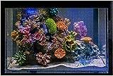 Imágenes de stock de peces de acuario marino submarino de langosta, rompecabezas grandes de 500 piezas para adultos, juguete educativo para niños, juegos creativos, entretenimiento, rompecabezas de m