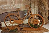 Rostikal Edelrost Deko Fahrrad 41 x 25 cm Vintage Tischdeko Gartendeko Rost Bike auf Bodenplatte