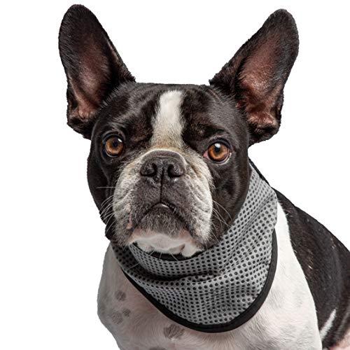 Brave Bark U.S. Army - Pet Cooling Bandana (Large/X-Large)