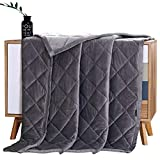 MANLINAR Soft Plush Weighted Blanket, Adult 15lbs Minky Weighted Blankets, Diamond Quilted Fleece Weighted Throw, Fuzzy Heavy Blanket (48'x72') for Twin/Full Size Bed and Couch, Machine Washable,Grey