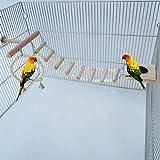 Loro oscilación, oscilaciones Birdcage de madera de la jaula, Stand Juega gimnasio de escalada Escalera alimentador Copa Chew infantil representa el periquito Cockatiel Bird Juguetes Set de 4 piezas