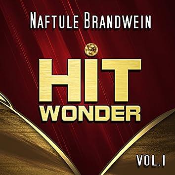 Hit Wonder: Naftule Brandwein, Vol.1