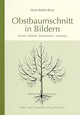 Obstbauschnitt in BildernHans W Riess