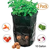 Amgate 2 Pack 10 Gallon Garden Potato Grow Bag Vegetables Growing Planter Tub with Handle Access Flap for Harvesting Vegetables: Potato, Carrot, Tomato, Onion