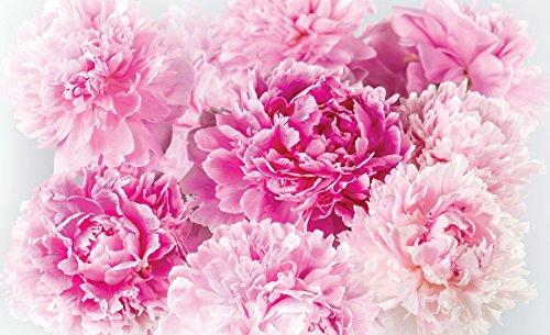 DELESTER DESIGN 1342P8 Papier Peint Murale Compose en 4 Panneaux Nature Fleures  Multicolore 368 x 254 cm