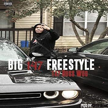 Big 147 Freestyle