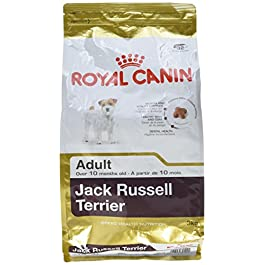 Royal Canin Dog Food Jack Russell Complete