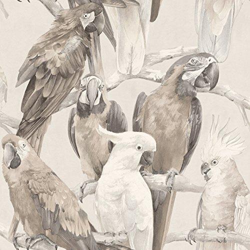 rasch Tapete 803105 aus der Kollektion Lucy in the Sky – Vliestapete in Grau mit Papageien-Design – 10,05m x 53cm (L x B)