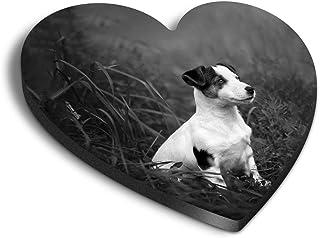 Destination Vinyl ltd Aimants en MDF en forme de cœur – BW – Jack Russell Terrier Chiot pour bureau, armoire et tableau bl...