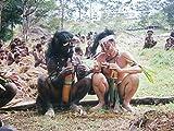 インドネシア 裸のラニ族に 津田寛治が出会った 337