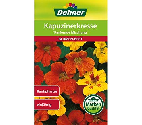 """Dehner Blumen-Saatgut, Kapuzinerkresse \""""Rankende Mischung\"""", 5er Pack (5 x 6 g)"""