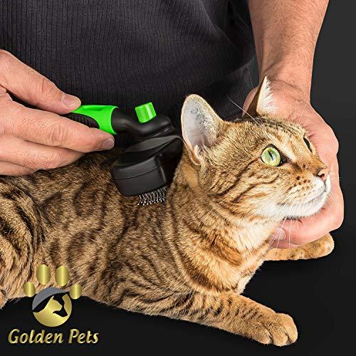 Golden Pets selbstreinigende Hundebürste & Katzenbürste | ALL-IN-ONE-Pflege für kurz-Langhaar geeignet | Einfache Reinigung durch EASY-CLEAN-Funktion | TOP Fellpflege für Ihren tierischen Freund - 4
