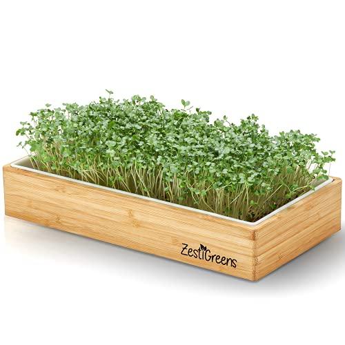 Microgreens Growing Kit Self Watering - Includes Microgreens Tray, Microgreens Seeds, Mats and...