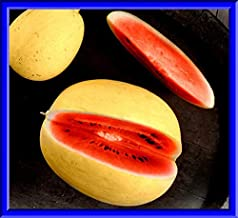Golden Midget Watermelon Seeds #PAJ