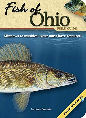 Image OfFish Of Ohio Field Guide (Fish Identification Guides)