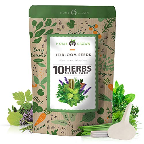 10 Culinary Herb Seed Vault - Heirloom and Non GMO - 3000+ Seeds for Planting for Outdoor or Indoor Herb Garden, Basil, Cilantro, Parsley, Chives, Thyme, Oregano, Dill, Marjoram, Mint, Tarragon