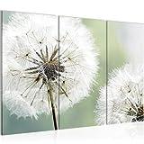 Bilder Blumen Pusteblume Wandbild 120 x 80 cm Vlies - Leinwand Bild XXL Format Wandbilder Wohnzimmer Wohnung Deko Kunstdrucke Grün 3 Teilig - Made IN Germany - Fertig zum Aufhängen 207131a