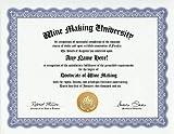 Winemaking Winemaker Degree: Custom Gag Diploma Wine Making Wine Maker Doctorate Certificate (Funny Customized Joke Gift - Novelty Item)
