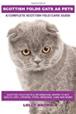 Scottish Folds Cats as Pets: Scottish Fold Facts & Information, where to buy, health, diet, lifespan, types, breeding, care and more! A Complete Scottish Fold Care Guide
