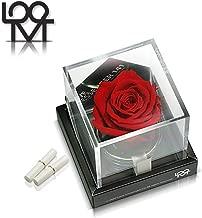 Love Messenger Handmade Preserved Never-Wilting Eternal Everlasting Forever Flower Red Rose