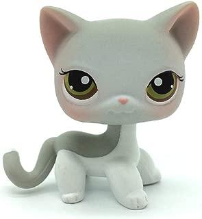 ZAD Rare Littlest Pet Shop Short Hair Gray White Cat Kitten LPS Toy #138