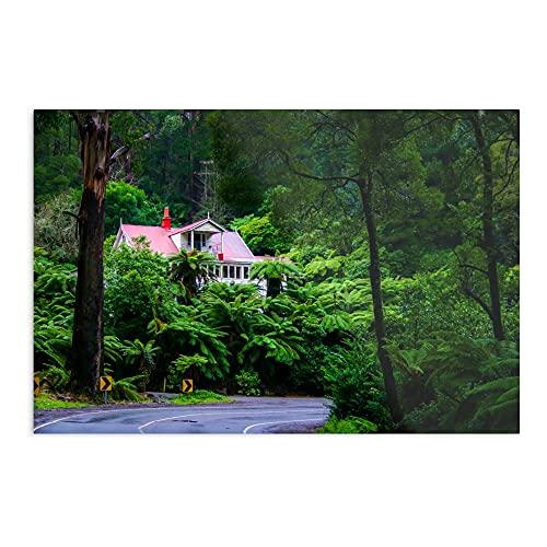 Generico Fern House – Stampa Art Trends Design I Poster – Decorazione senza cornice per la casa – Personalizzabile.