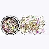 QTQHOME Set de 1 caja de Star Moon UV resina epoxi molde epoxi cobre Mall roto diamante Crystal Sand mixto para joyas accesorios decoración