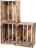 LAUBLUST Vintage Holzkisten 3er Set Geflammt   L - ca. 40 x 30 x 25 cm   Weinkisten & Obstkisten -...