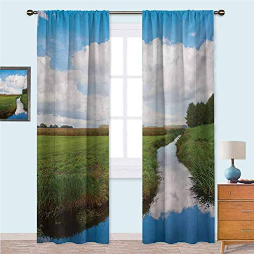 Aishare Store Curtains for Living Room Reflective Calm River Scenery Meadow Grass Clouds Wildflowers Trees Shrubs Noise Reducing Curtain 52' x 95' Green Blue White