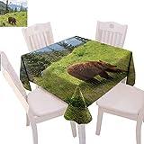 Mantel cuadrado de oso para celebrar la vida silvestre en las montañas temático de animales peludos Carnívoro Yellowstone Nature Habitat Enjoy dining,70 x 177,8 cm, verde marrón