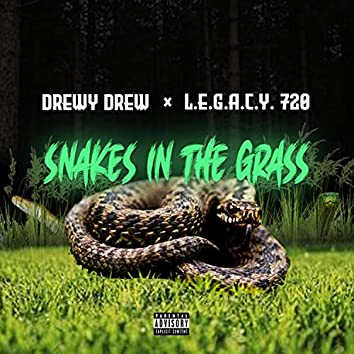 Snakes in the Grass (feat. L.E.G.A.C.Y. 720)
