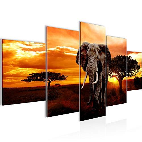 Bilder Afrika Elefant Wandbild Vlies - Leinwand Bild XXL Format Wandbilder Wohnzimmer Wohnung Deko Kunstdrucke Orang 5 Teilig - MADE IN GERMANY - Fertig zum Aufhängen 001253a