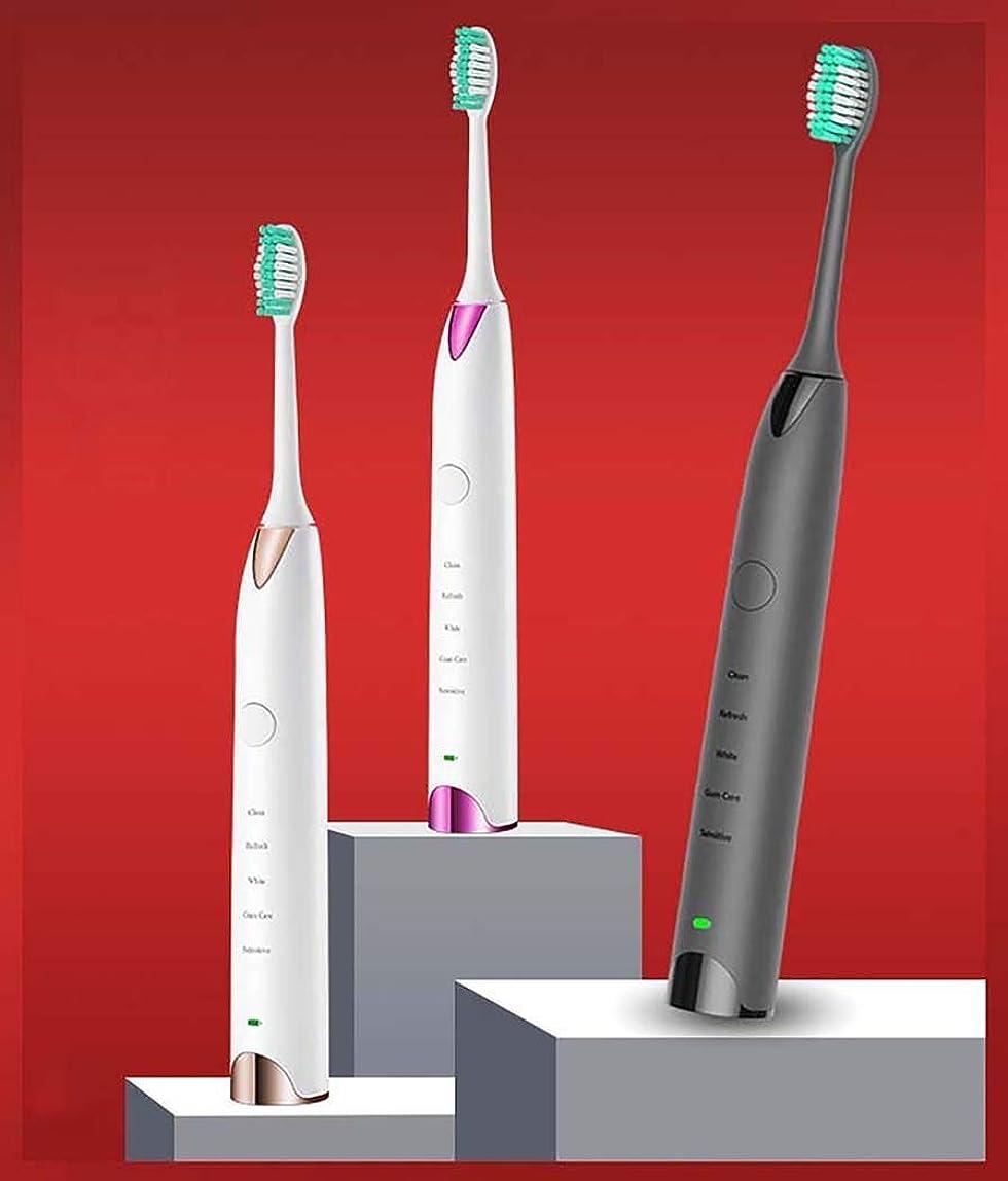 大人思い出させる満足させる電動歯ブラシ、ミュート防水電動歯ブラシ、充電式自動歯ブラシ、インテリジェントタイミングチェンジエリアリマインド、USB充電方法(カラー:ピンク)
