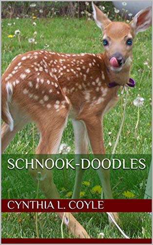 Schnook-Doodles (English Edition)