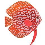 Falso Silicona Adorno De Peces De Acuario Artificiales De Silicona Fish Tropical Fish Luminoso Adornos para El Tanque De Pescados De La Decoración De Los Pescados del Acuario Artificial