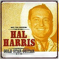 Gold Star Guitar