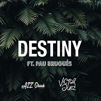 Destiny (feat. Pau Brugués)