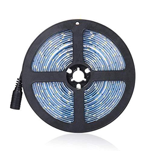 Tira de luces LED impermeables, 3528 16,4 pies 300 ledes, blanco cálido/blanco frío, luces LED de cocina, luces de escaleras, 12 V CC, iluminación brillante flexible, para cocina, jardín