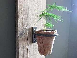 Pennington 2 Pcs Set Décor Wall Mounted Pot Ring Planter, Heavy Rim, Easy To Install (7.5 inch (2 pcs set))