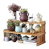 ODOMY - Soporte para plantas, de madera, para exterior e interior, escalera de plantas, con 2 estantes, para maceta, decorativo, para balcón, terraza, salón o jardín