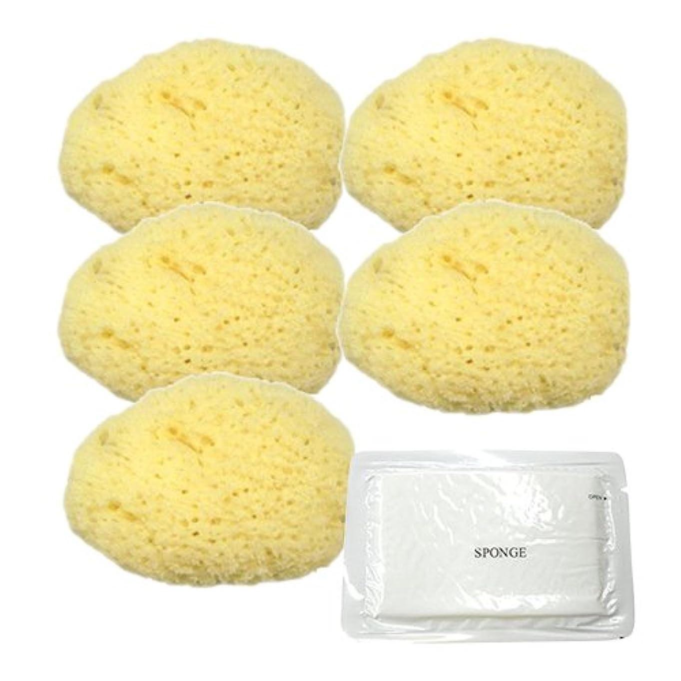 悪性のラメ不合格ユタカ 天然海綿スポンジ(フェイススポンジ) 大 × 5個 + 圧縮スポンジセット