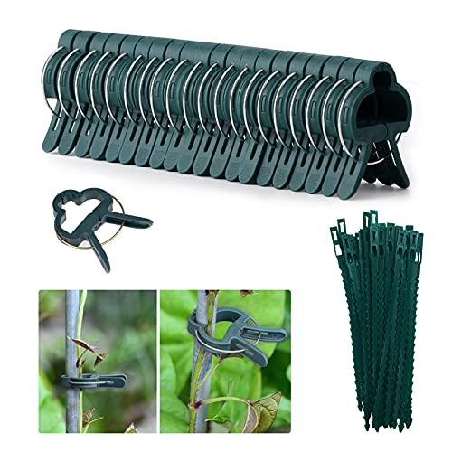 Kakveiai -   60Pcs Pflanzenclips