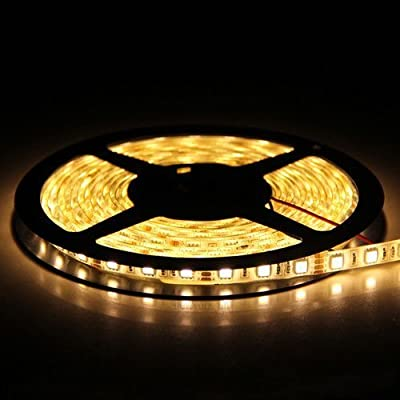 Flexible LED Strip Lights,300 Units SMD 5050 LEDs,LED Strips,Waterproof,12 Volt LED Light Strips, Pack of 16.4ft/5m,for Holiday/Home/Party/Indoor/Outdoor Decoration(Warm White)
