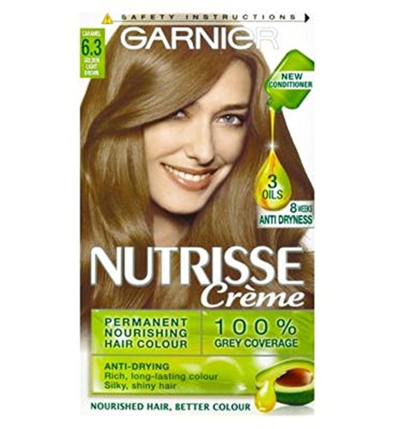 看板それによって診療所Garnier Nutrisse Cr?me Permanent Hair Colour 6.3 Caramel Light Brown - ガルニエNutrisseクリームパーマネントヘアカラー6.3キャラメルライトブラウン (Garnier) [並行輸入品]